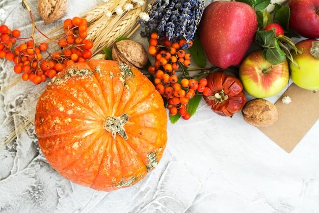 Autumn or harvest concept