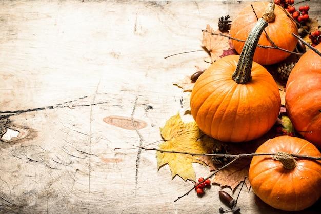 秋の収穫木製の背景に葉と枝を持つ新鮮なカボチャ