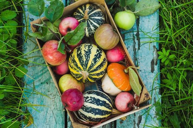나무 파란색 배경에 장식 호박, 상자에 사과, 가을 수확