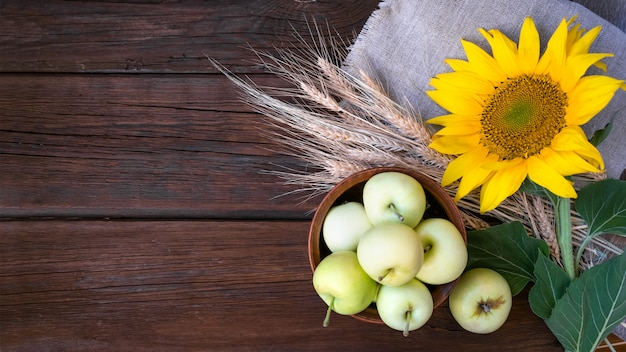 Autumn harvest, natural products, greeting card concept