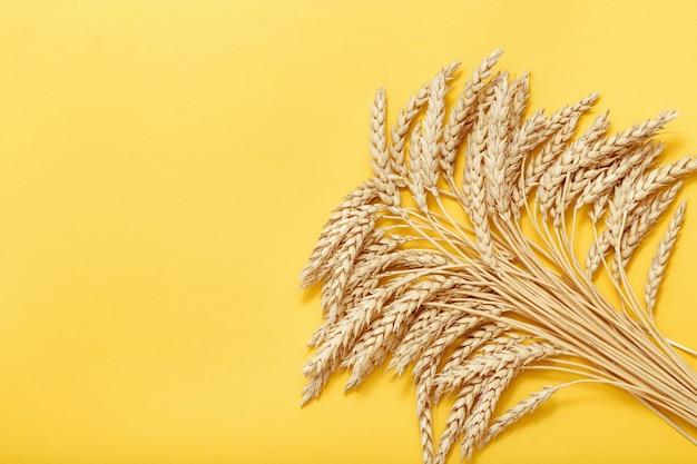 穀物の秋の収穫黄色の小麦の穂を持つ束の茎の上面図