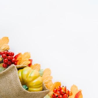 白い背景の上の秋の収穫
