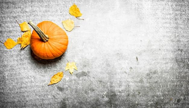 Autumn harvest. pumpkin with autumn leaves on stone table.