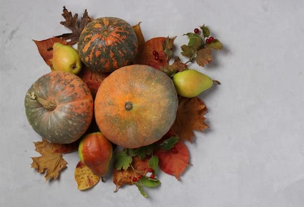 가을 수확: 호박, 배, viburnum 및 회색에 여러 가지 빛깔의 잎. 추수 감사절. 복사 공간