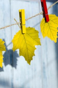 秋が到着したコンセプト秋の黄色の葉の背景