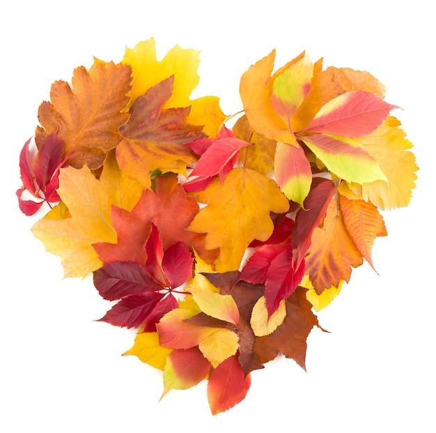 Осенний символ сердца, изолированные на белом фоне.