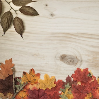 Autumn herbarium frame lying on wooden surface