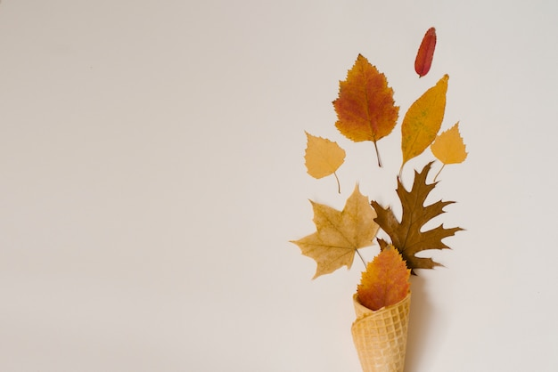 Autumn ice cream. creative layout of autumn leaves. yellow autumn fallen leaves in a waffle cup . autumn season. copy space