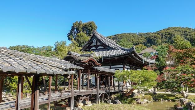Осень в японии охота на красные листья клена киото