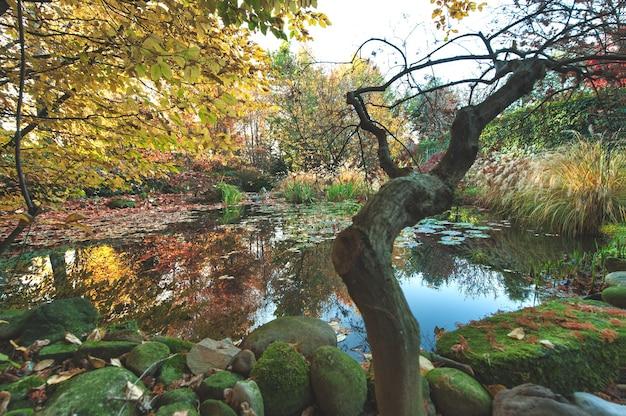 식물과 연못이 있는 이탈리아 북부의 가을