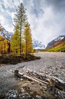 Осень в долине реки актру, северо-чуйский хребет, алтай, россия