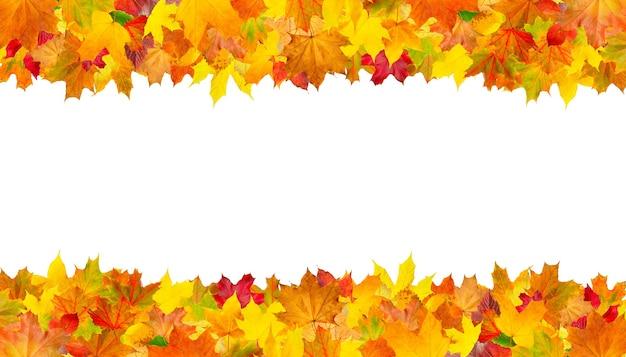 Осенний изолированный лист границы рамки