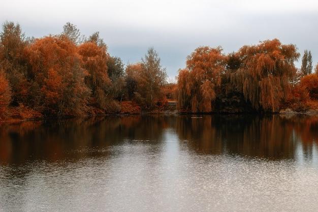 Осеннее озеро в пасмурный день
