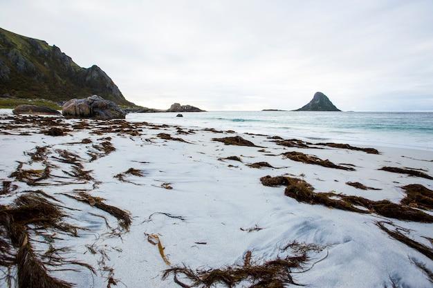 ノルウェー北部、ロフォーテン諸島の秋の風景とビーチ