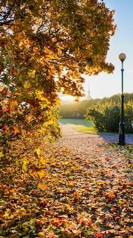 ロシアの公園の秋の風景 Premium写真