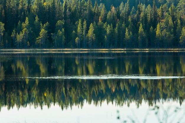 フィンランド北部、ラップランド、ムオニオの秋の風景
