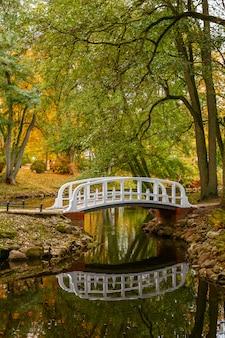 リトアニアのパランガの植物公園の秋の風景。池の静かな水、白い橋、緑と黄色の木々。