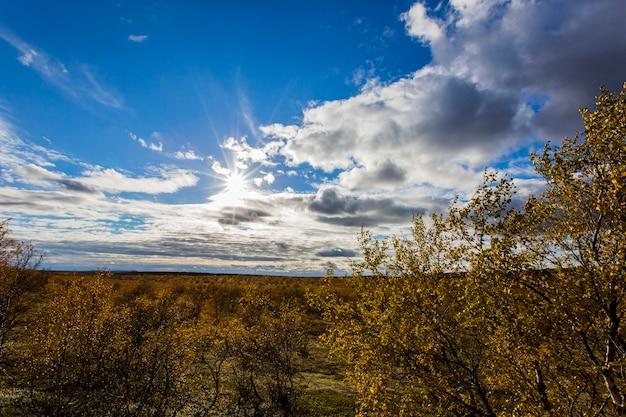ノルウェー北部、ツンドラの秋の風景。ヨーロッパ。