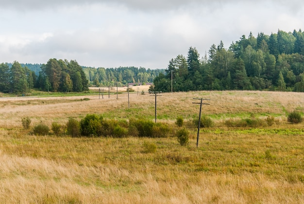 Autumn landscape in karelia with a field