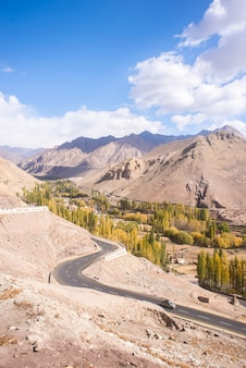 Autumn landscape in ladakh region, india. valley with trees and mountains background in fall.