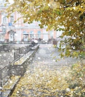 Autumn landscape. the leaves fly from the trees in the city. autumn in the city on small street along forged fences