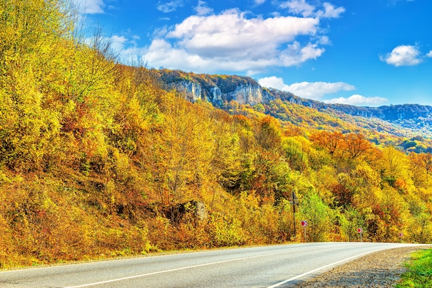 Autumn landscape of a mountain gorge covered with a dense forest