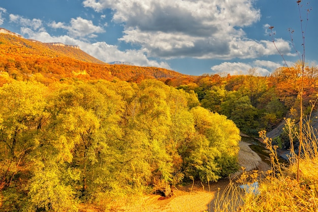 Autumn landscape of a mountain slope covered with a dense forest