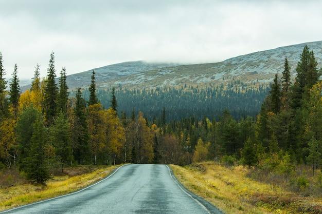 Autumn landscape in muonio, lapland, northern finland.