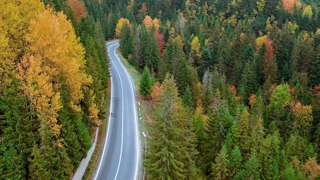 Осенний пейзаж, асфальтированная дорога в горном лесу. желто-красные деревья и зеленые хвойные деревья создают живописный контраст.