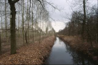 Autumn landscape, river