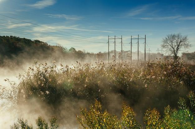 Осенний пейзаж. небольшой лес реки осенний туман небо река