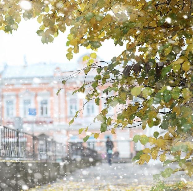 가 풍경입니다. 나뭇잎은 도시의 나무에서 날아갑니다. 위조 울타리를 따라 작은 거리에 도시의 가을