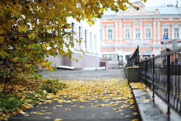 秋の風景。葉は街の木から飛んでいます。鍛造柵に沿った小さな通りの街の秋