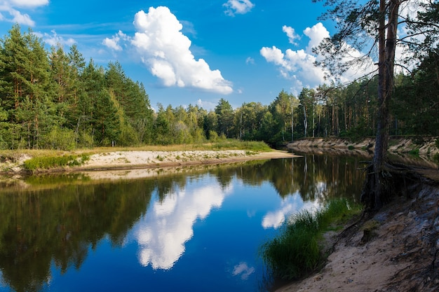 秋の風景。川は森の中を流れ、青い空と雲が流れています。