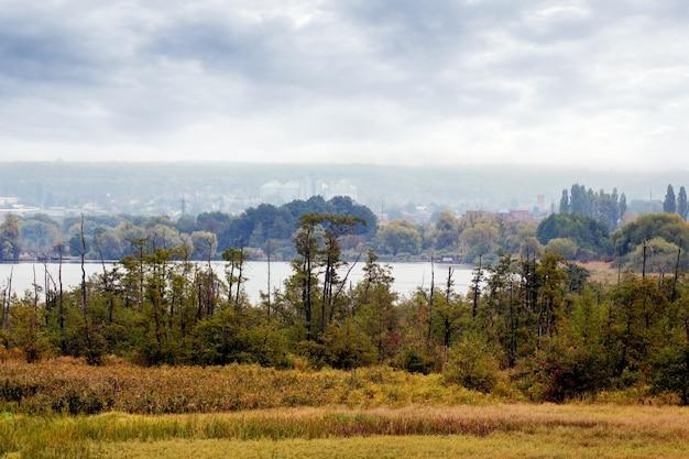 秋の風景、曇りの川沿いの木々