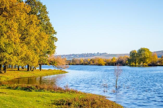 晴天の川と森のある秋の風景