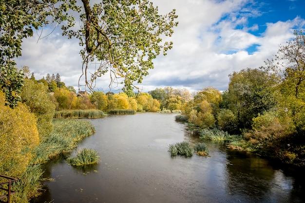 川と晴れた日の海岸に植生のある秋の風景