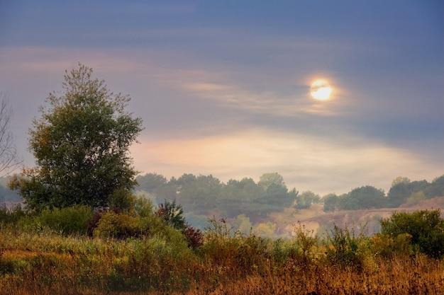 日没時に美しい空と秋の風景。自然の中で穏やかな夜
