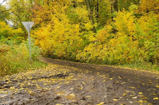 カラフルな紅葉の木々のある秋の風景