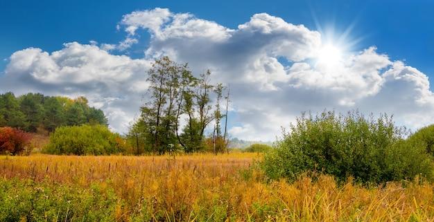 野原に乾いた草、木々、白い雲と太陽と絵のように美しい青い空と秋の風景