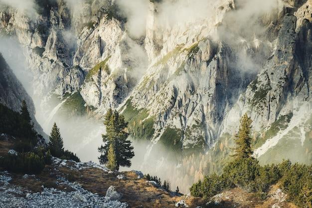 Осенний пейзаж с вечнозелеными еловыми деревьями в доломитовых альпах, изумительные скалистые горы в парке тре чиме ди лаваредо, италия