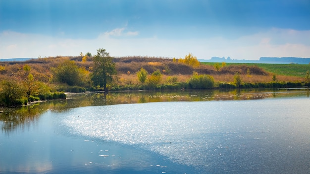 水に太陽のまぶしさと植生の海岸で覆われた秋の風景