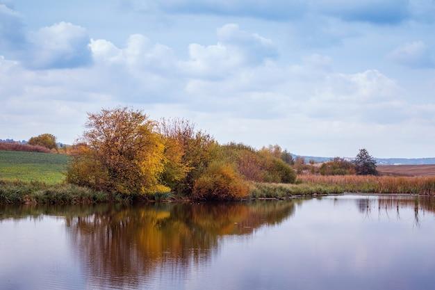 木々が川に映る秋の風景