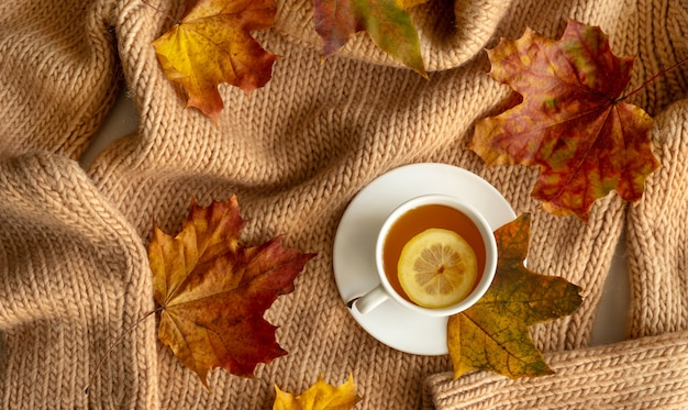 Autumn layout. fallen bright leaves and cup of hot tea with lemon on a knitted background. top view
