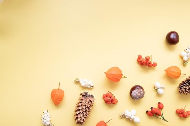 물리학, 원뿔, 잎, 마가목이 있는 가을 레이아웃. 노란색 배경에 가을 선물의 평평한 위치