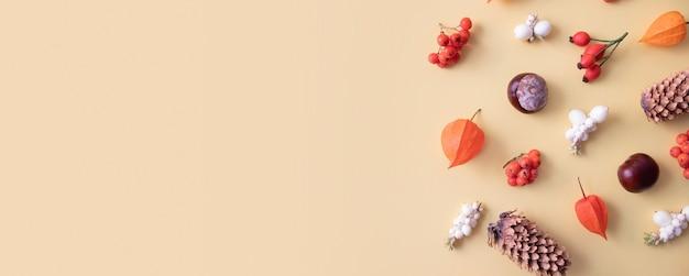 サイサリス、コーン、葉、ナナカマドと秋のレイアウト。バナー形式の黄色の背景に秋のフラットレイパターン自然の贈り物。コピースペース