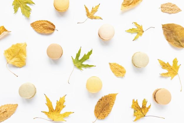 秋のレイアウト黄色の葉と白い背景のマカロン秋の秋のコンセプトフラットレイ上面図