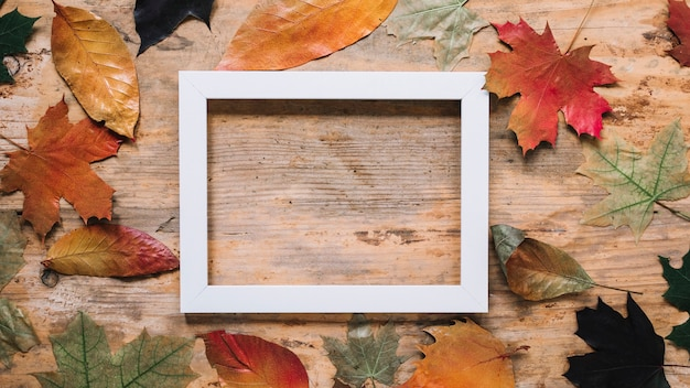 Autumn leaf composition with picture frame