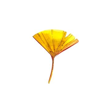 Осенний лист - гинко. осенний кленовый лист изолированы. акварельные иллюстрации