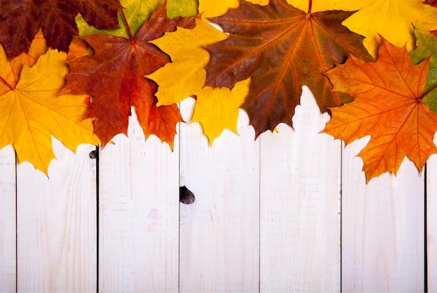 Осенний лист на деревянной предпосылке. крупный план